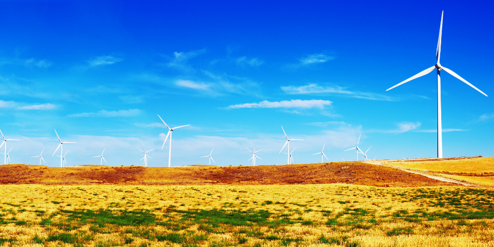 Paul Beare blog - sustainable